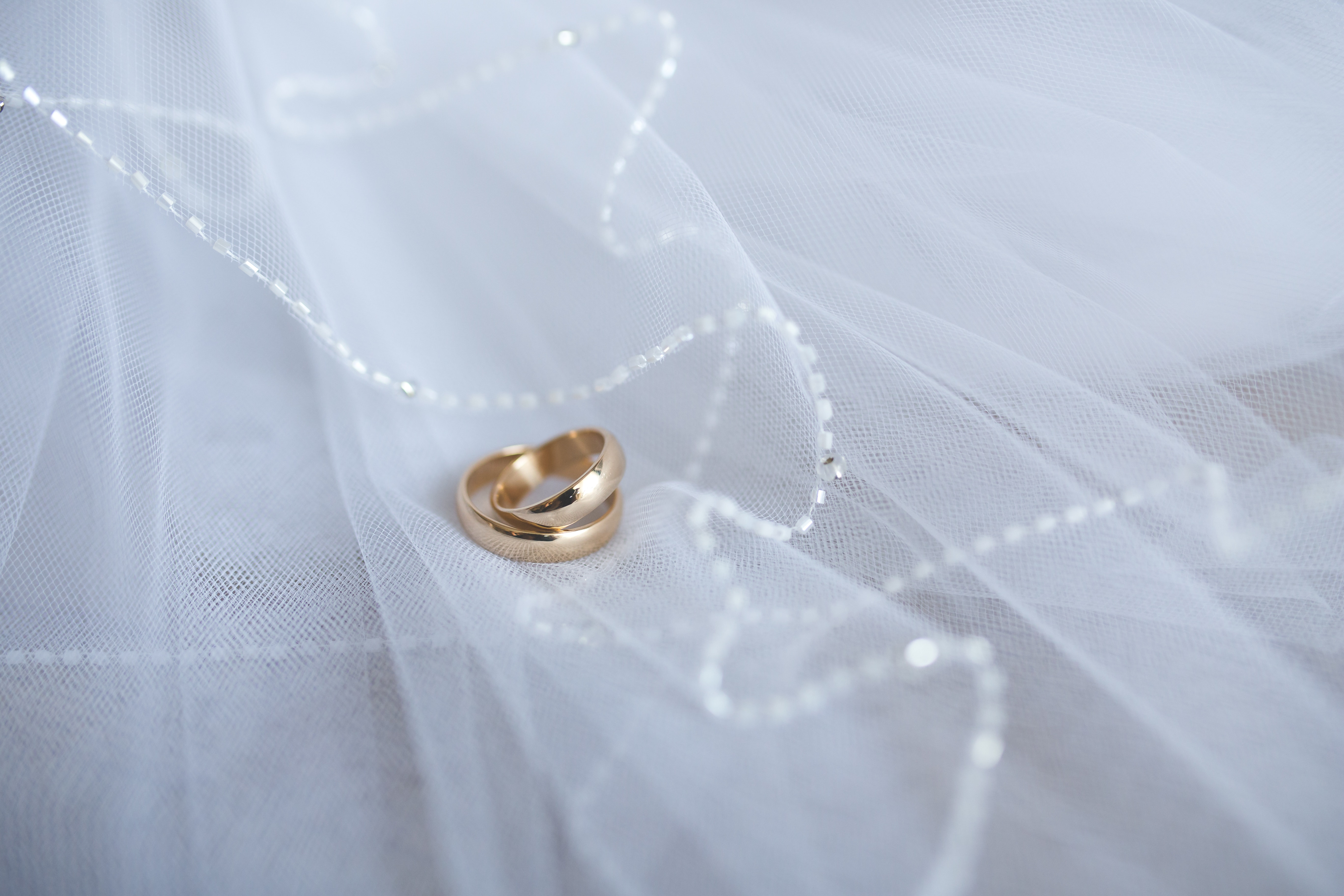 polished rings